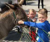 Aiden (6) & Demi Lee (3) Collins meet Ernie the donkey