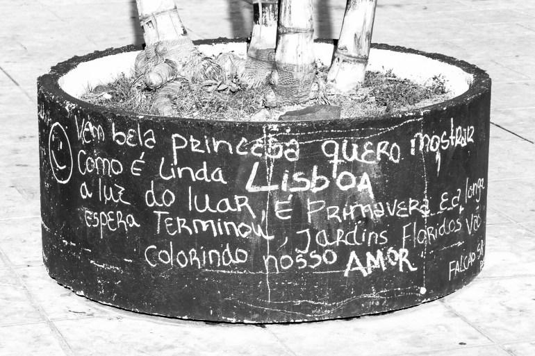 Ven bella princesa / quiero mostrar cómo es tan hermosa la luna de Lisboa / es primavera y la larga espera ha terminado / jardines de flores serán colorear nuestro amor