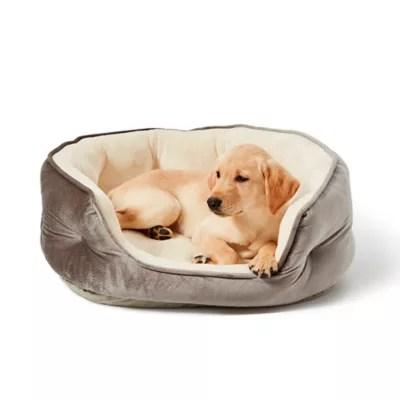 dog beds bed bath beyond