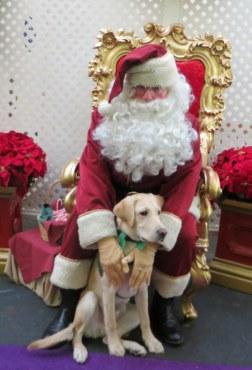 Kelton and Santa at Knotts