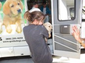 Puppy Truck 6-15 (39)