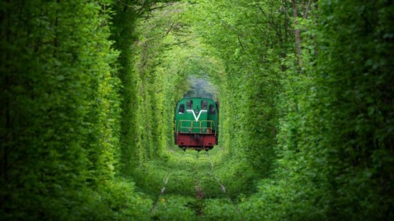 Train coming out of Tunnel of Love