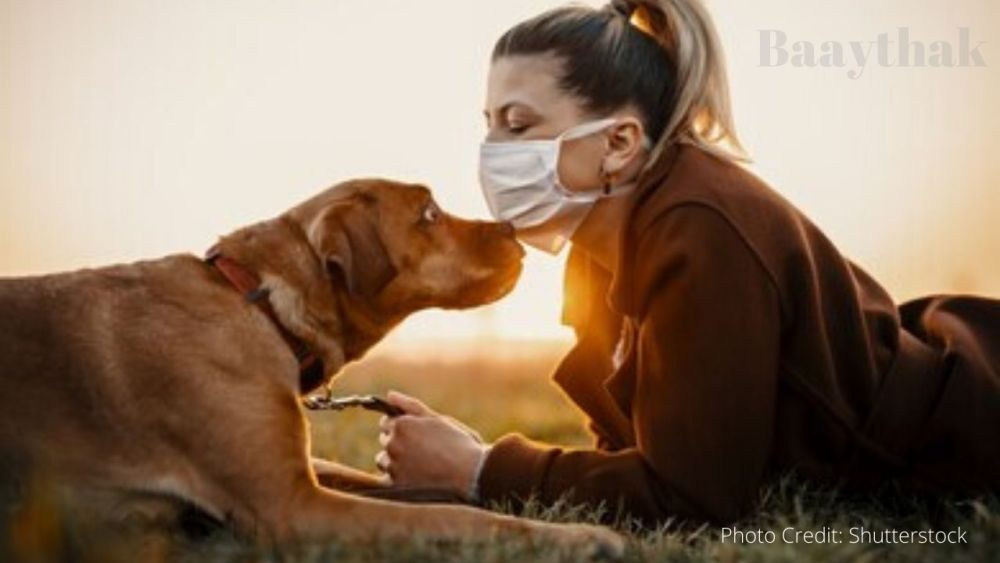 Is a regular sanitizer safe for your pet - Baaythak (2)