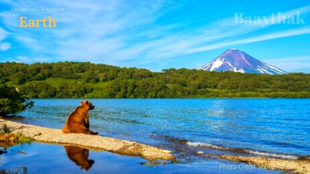 Unexplored Places on Earth - Bear in Kamchatka Peninsula, Russia - Baaythak