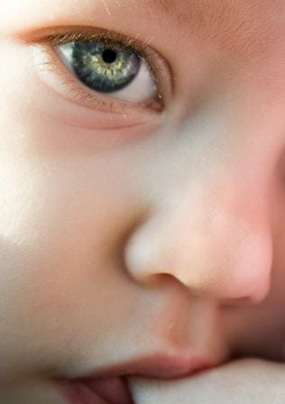 Fotó: www.sxc.hu