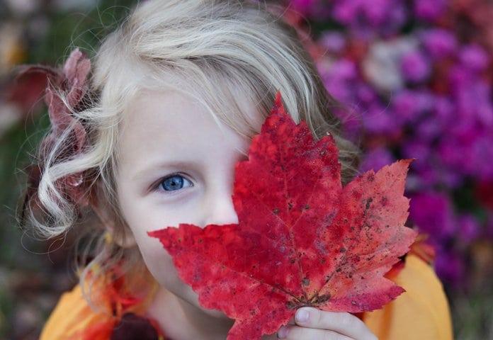 szőke hajú kislány egy őszi faleveket tart a szája elé
