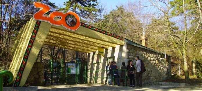Pécsi Állatkert és Akvárium-Terrárium