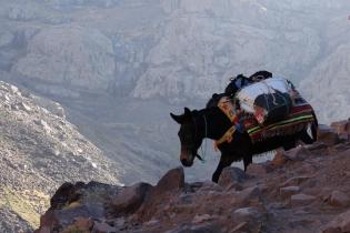 Morocco_High_Atlas_Toubkal_refuge_47