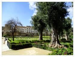 morocco_fez_jnane_sbil_garden_11