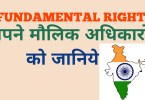 Fundamental Rights in Hindi: Article, Meaning & Full Details