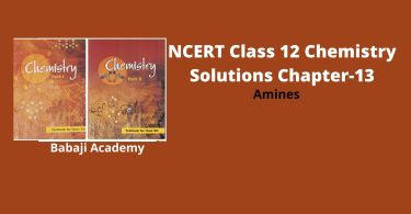NCERT Class 12 Chemistry Chapter 13 Amines Solutions and Notes Pdf Download