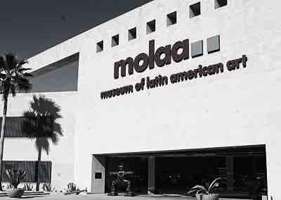 Video: MOLAA