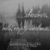 Darkness Follows Teaser #3 - #RentasticReads #BabblingChatterReads