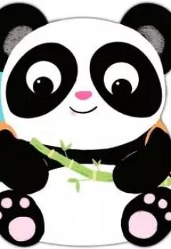 Livres Couvertures de Paul Le Panda