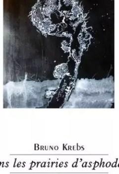 Livres Couvertures de Dans Les Prairies D'asphodèles