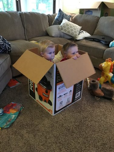 greyson and henley in the box
