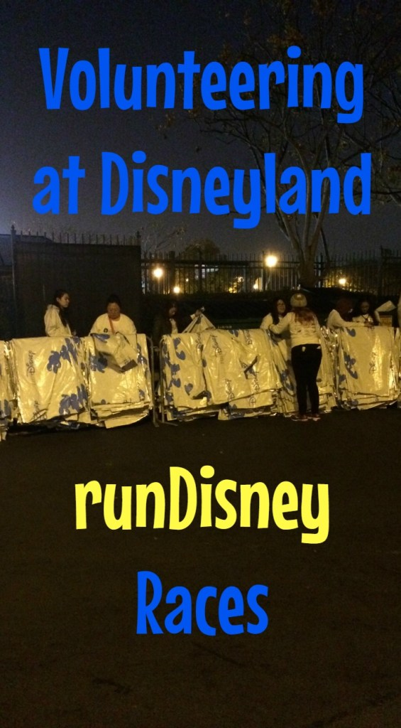Volunteeringrundisney_pin