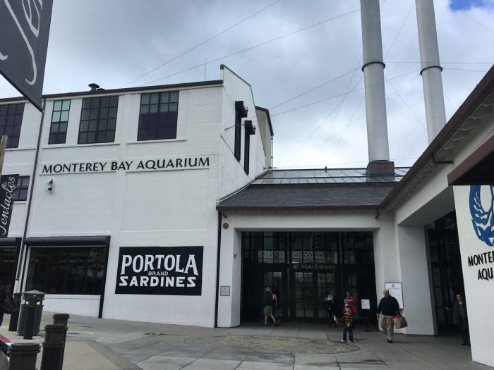 Visit Monterey Bay Aquarium