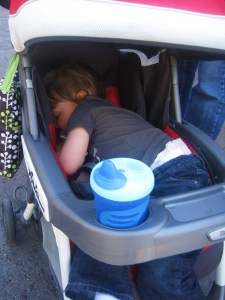 Napping in Disneyland
