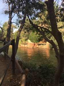 View from the Tom Sawyer island walking path