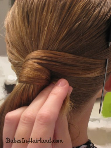 Fancy Wrapped Ponytail (10)