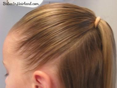 Cinna-buns Hairstyle (2)