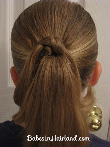 Knotty Ponytail(s) (1)