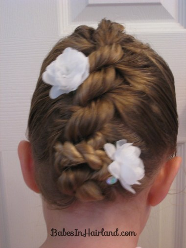 Rope/Twist Braid - French Style (3)
