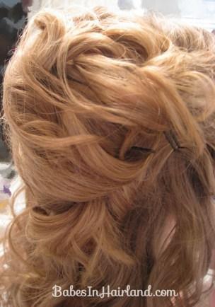 Alice in Wonderland Hairstyle #3 (12)