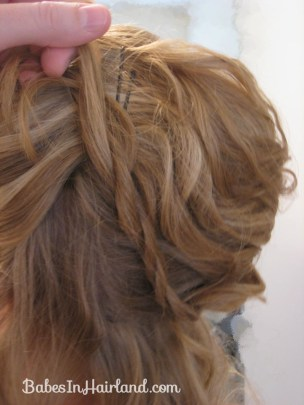 Alice in Wonderland Hairstyle #3 (16)