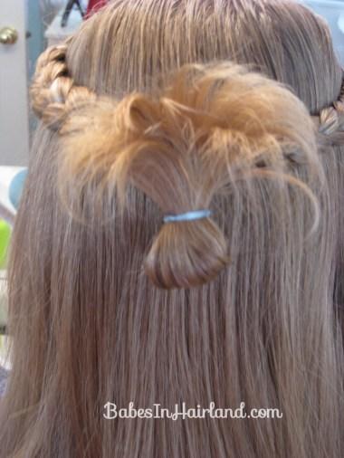 Simple Braids & a Turkey Tail (8)