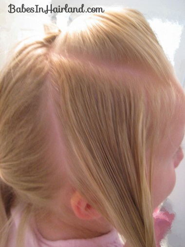 Cascade/Feathered Braid Hairstyle (4)