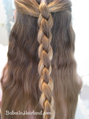 Ponies and 4 Strand Braid (7)
