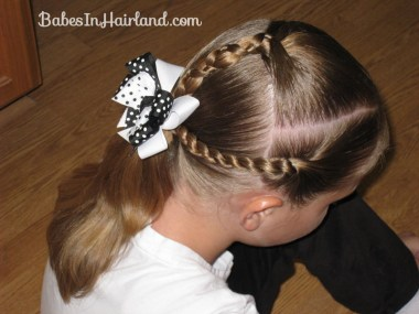 Uneven Braid & Rope/Twist Braids (2)