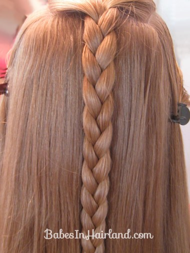 Braided Braid (3)