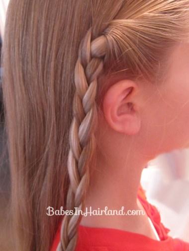 Braids & Fishbone Bun (2)