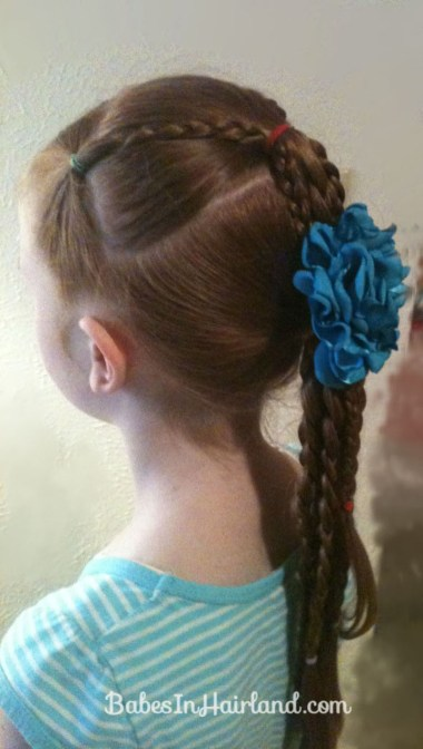 Ponytails and Braids Hairstyle (17)