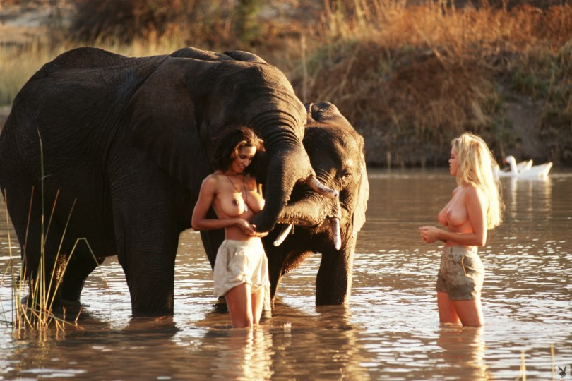 Karin Taylor, Jami Ferrell Playboy Safari