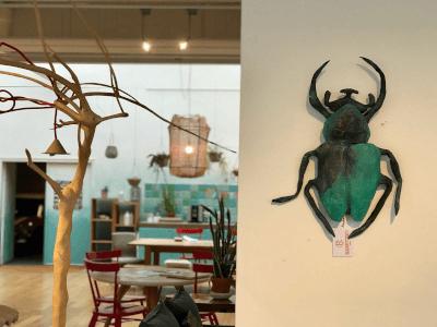 papiermache beetle in de keuken van cocomat