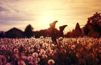 Photography by Julia Presslauer