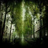 Julien-Coquentin-Strange-rain11