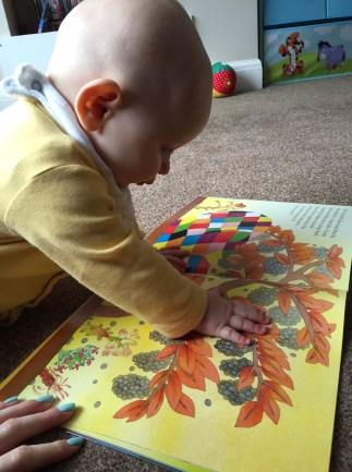 TM reading Elmer
