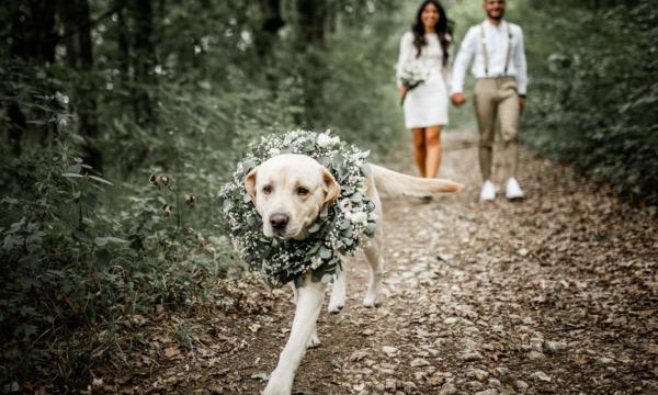 mariage-alsace-photographe-fleurs-babouchkatelier- (27)