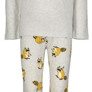 HEMA Kinderpyjama Met Bamboe - Wasbeer Grijsmelange (grijsmelange)