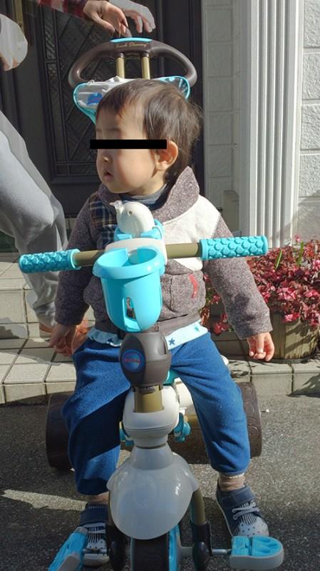 SmartTrikeな三輪車