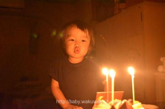 こゆたん 3歳 お誕生日