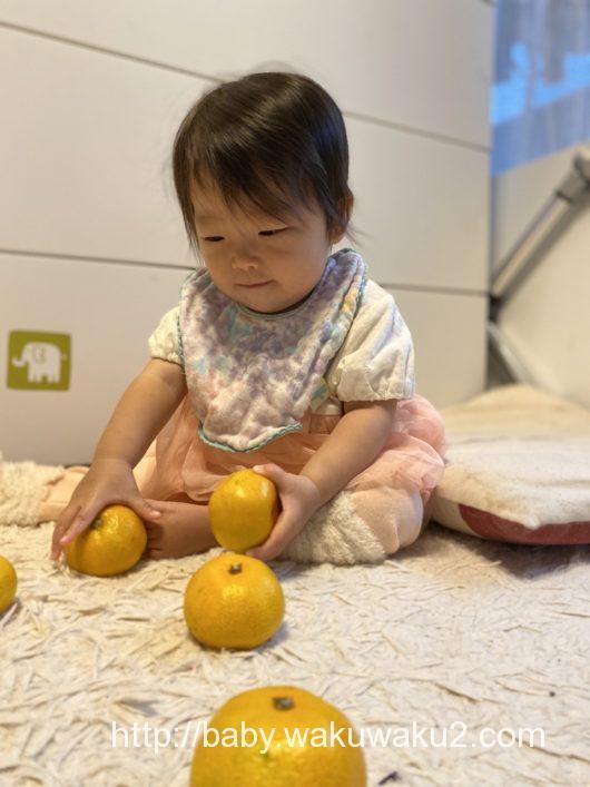 こえちゃん 赤ちゃん 11ヶ月