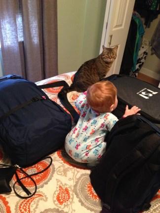 Packing helpers!