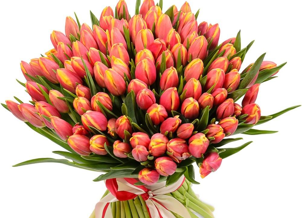 Тюльпанов букет 1000 штука, цветы где можно