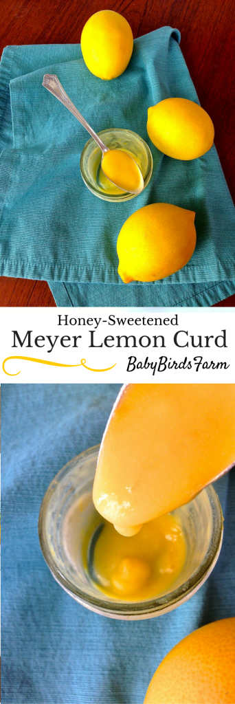 Honey-Sweetened Meyer Lemon Curd from @BabyBirdsFarm